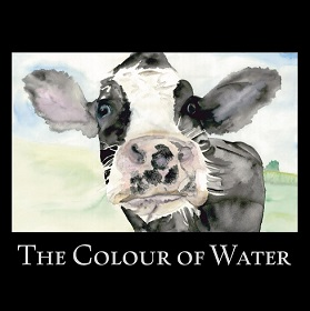 the colour of water s
